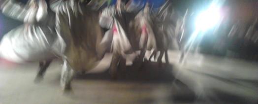 Actuación en San Miguel de Oya